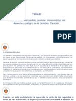 DERECHO PROCESAL CIVIL III - Tema III