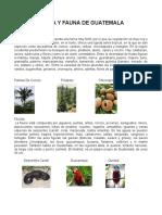 Flora y Fauna de Toda Centro America