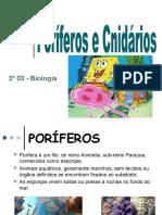 apresentao-100920220041-phpapp01