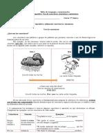 5° texto expositivo- sinónimos y conectores