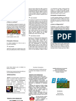 Paola triptico.pdf