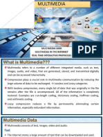 Multimedia Data and Protocols