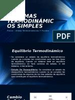 Sistemas termodinamicos simples.pptx