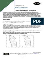 SCM_Scan_Register_Digitize_Bitmap_Petrel_2010.pdf