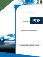 1.1 Introducción PR.pdf