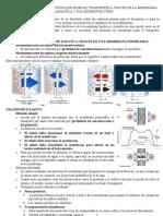 TEMA 35 principios energéticos transporte de membrana