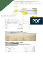 TEMA 38 glucolisis