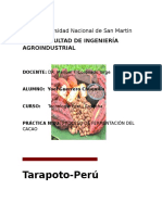 192837942-PROCESO-DE-FERMENTACION-DEL-CACAO-Theobroma-cacao-docx.docx