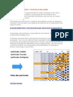 boletim4.pdf