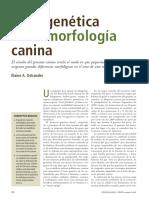 2007-09OstranderSpanish.pdf