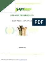 2_cultivo_del_esparrago.pdf