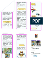 tripticodetemperacasera-140123074610-phpapp01