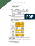 Insumos y estructura del plan de gestión ambiental 2013 v1.doc