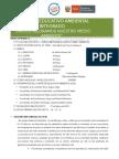 315214392-Proyecto-Educativo-Ambiental-Integrado-2015-odt.odt