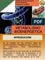 1. Bioenergética
