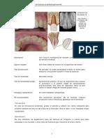 fractura dental tx.pdf