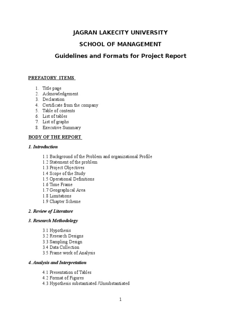sample project reports