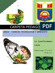 CARPETA PEDAGOGICA20171