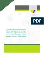 Rutas_y_protocolos_drogas.pdf