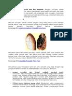 Cara Pencegahan Penyakit Paru Paru Bronkitis
