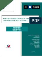 Criterios y Orientaciones Para La Flexibilización Curricular.[1]