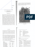 Dragon Fruit Cultivation.pdf