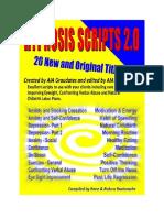 Script Manual 20 Scr345