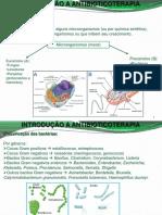 Introdução a Antibioticoterapia, Sulfas e Quinolonas 2014-2