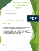 Fundamentos Tu00E9cnicos de La Psicoterapia de Apoyo