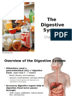 Ch23 Digestive