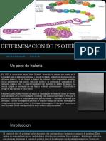 Determinacion de Proteína Cruda