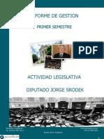 Informe de Gestión Diputado Jorge Srodek 2010