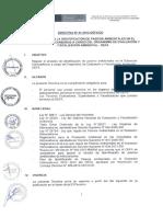 Directiva1 SUBSECTOR Hidrocarburos