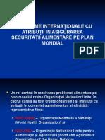 Seminar 2 Organisme Internationale Cu Atributii in Asigurarea Securitatii Alimentare Pe Plan Mondial