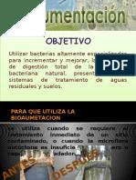 90805174-BIOAUMENTACION.pptx