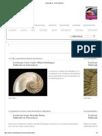 Matemáticas - Revista Esfinge