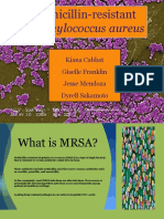 mrsa pp  microsoft pp  ppt  final without ncp