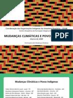 Cartilha Mudancas Climaticas e Povos Indigenas