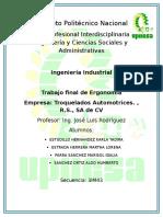 ERGONOMIA PROYECTO FINAL.docx