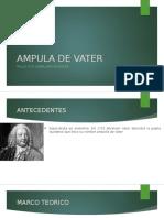 AMPULA DE VATER.pptx