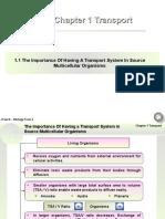 Chapter 1 Transport.ppt