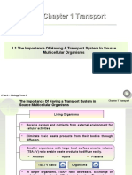 Chapter 1 Transport.ppt