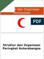 Kumpulan 2 Struktur-dan-Organisasi-Pertubuhan.pptx
