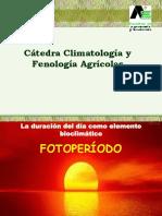 1666721885.DETERMINACIÓN DEL FOTOPERIODO.pdf