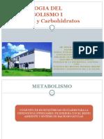 Patologia Del Metabolismo i