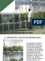 Modulo Nº 3 Cultivo de Microalgas