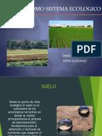 Exposicion Suelo (1) CIENCIA de SUELOS