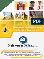 Brochure Seguridad Higiene y Ambiente