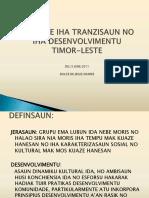 Dulce de Jesus Soares - 2011 Presentation on Youth Transitions