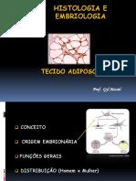 3TECIDO ADIPOSO